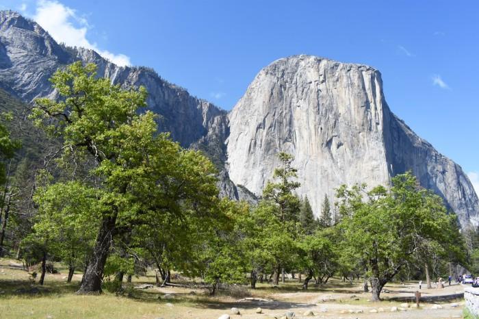 12 El Capitan Yosemite National Park