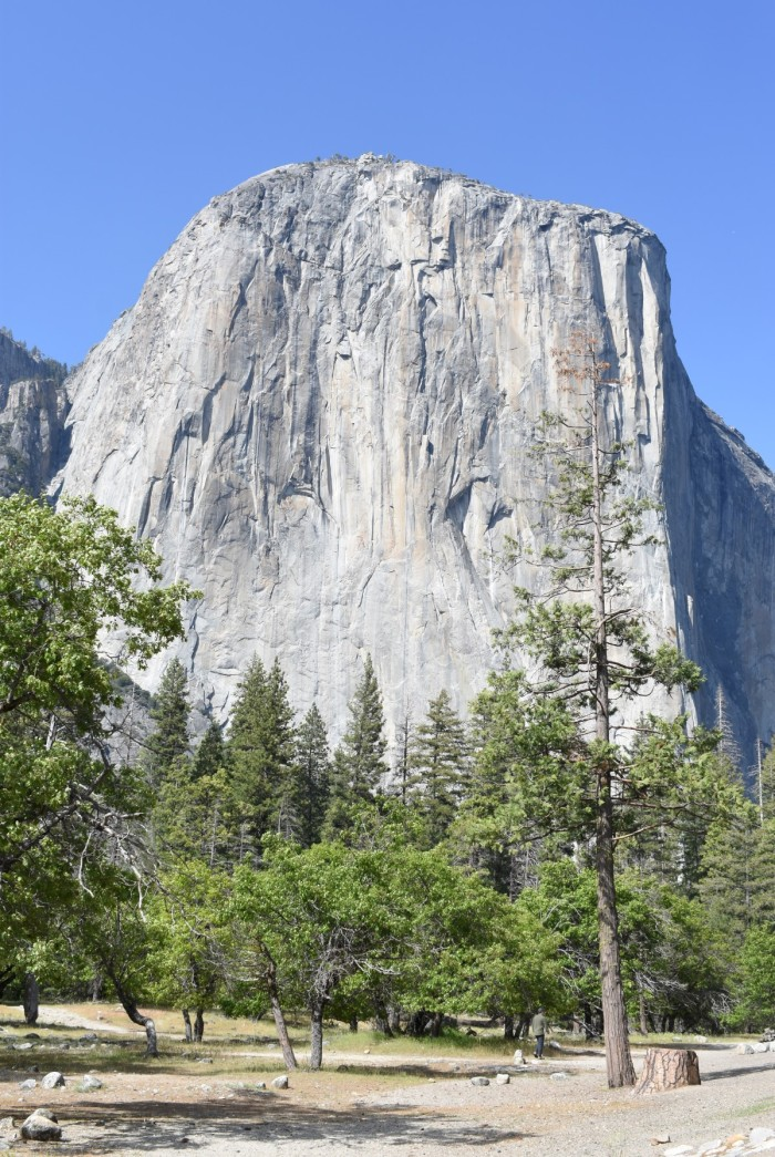 13 El Capitan Yosemite National Park